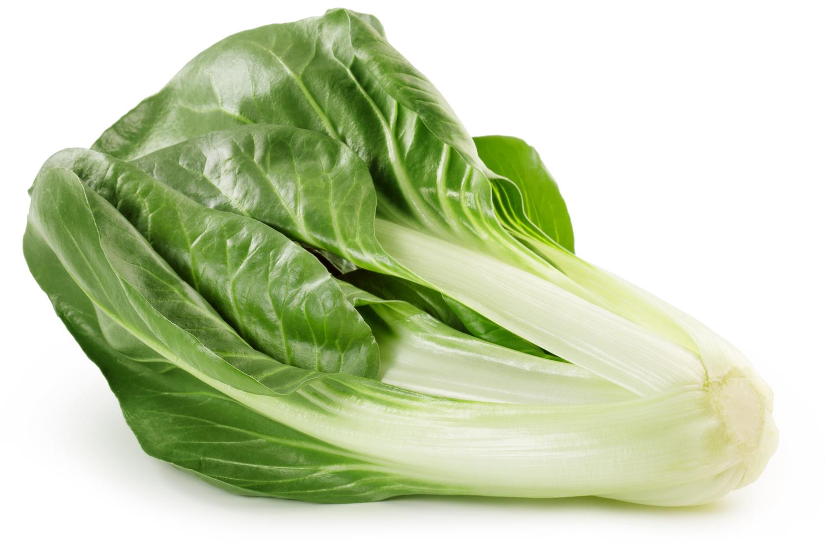 blette frais légume nutrition recette santé