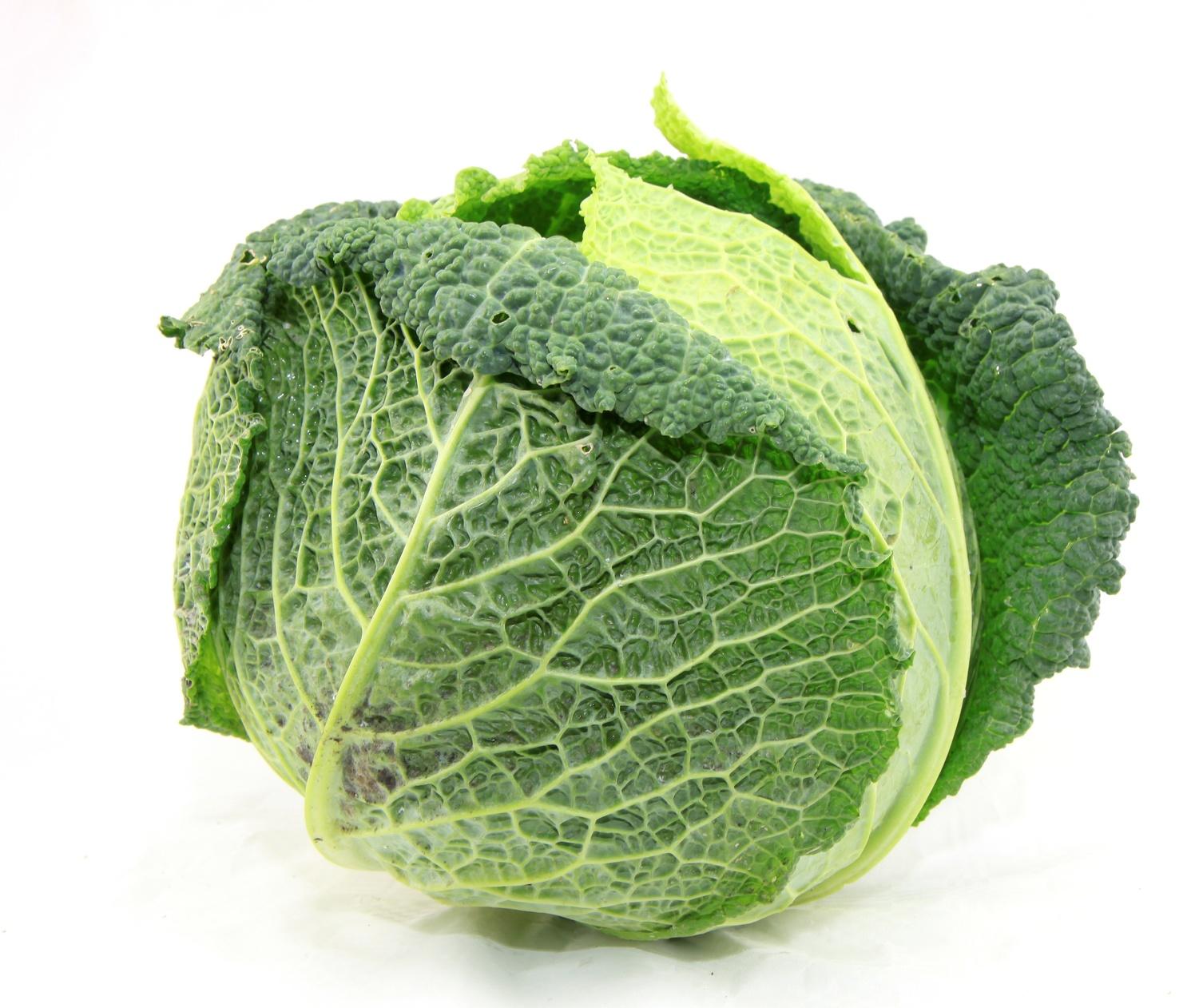 chou pommé frais légume nutrition recette santé