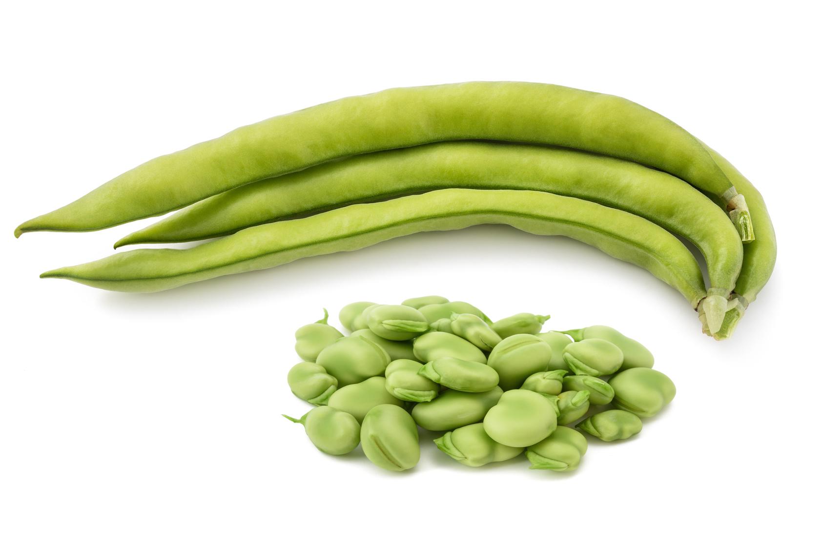 fève légume nutrition recette santé
