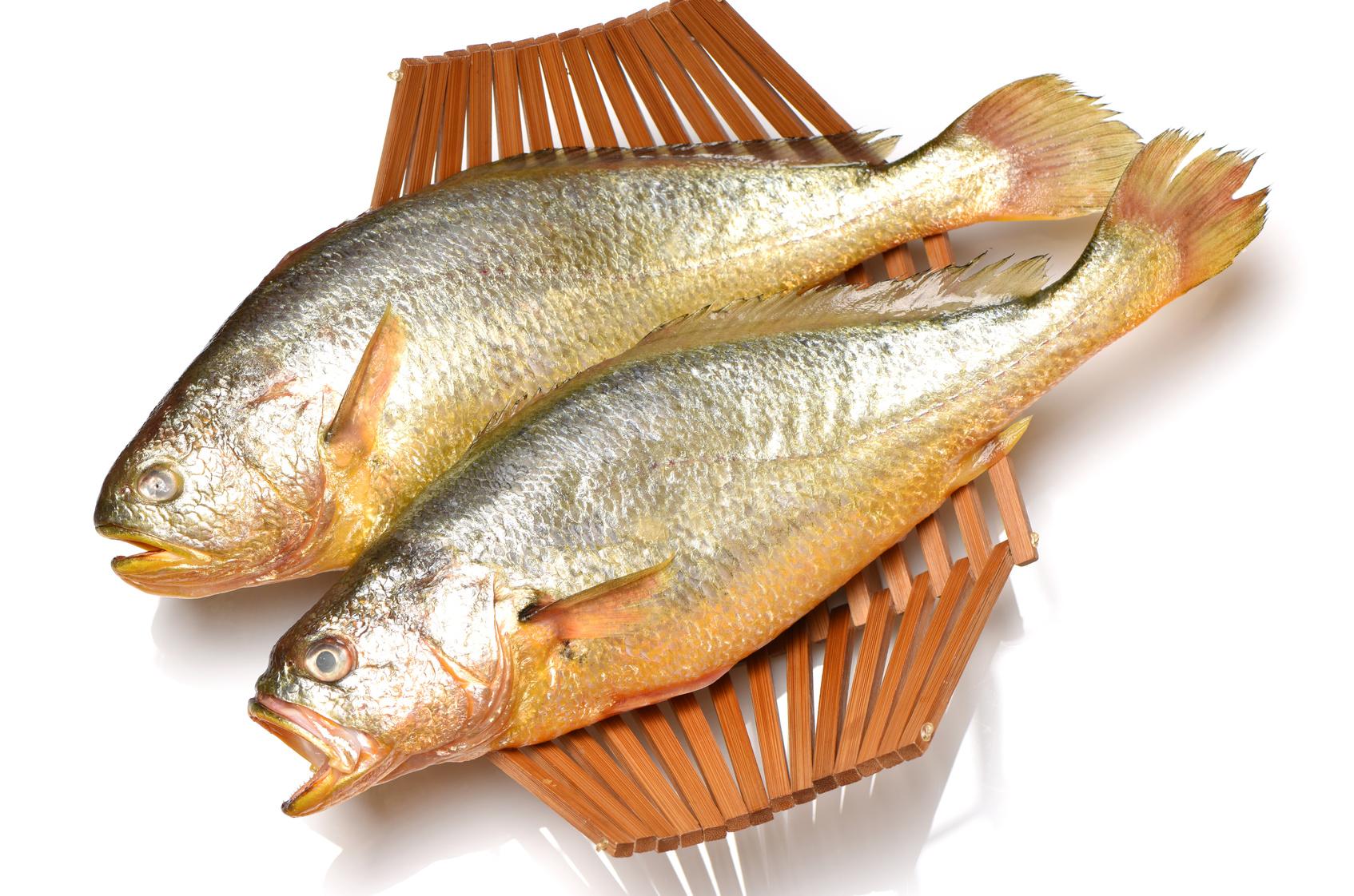 hareng poisson nutrition recette santé