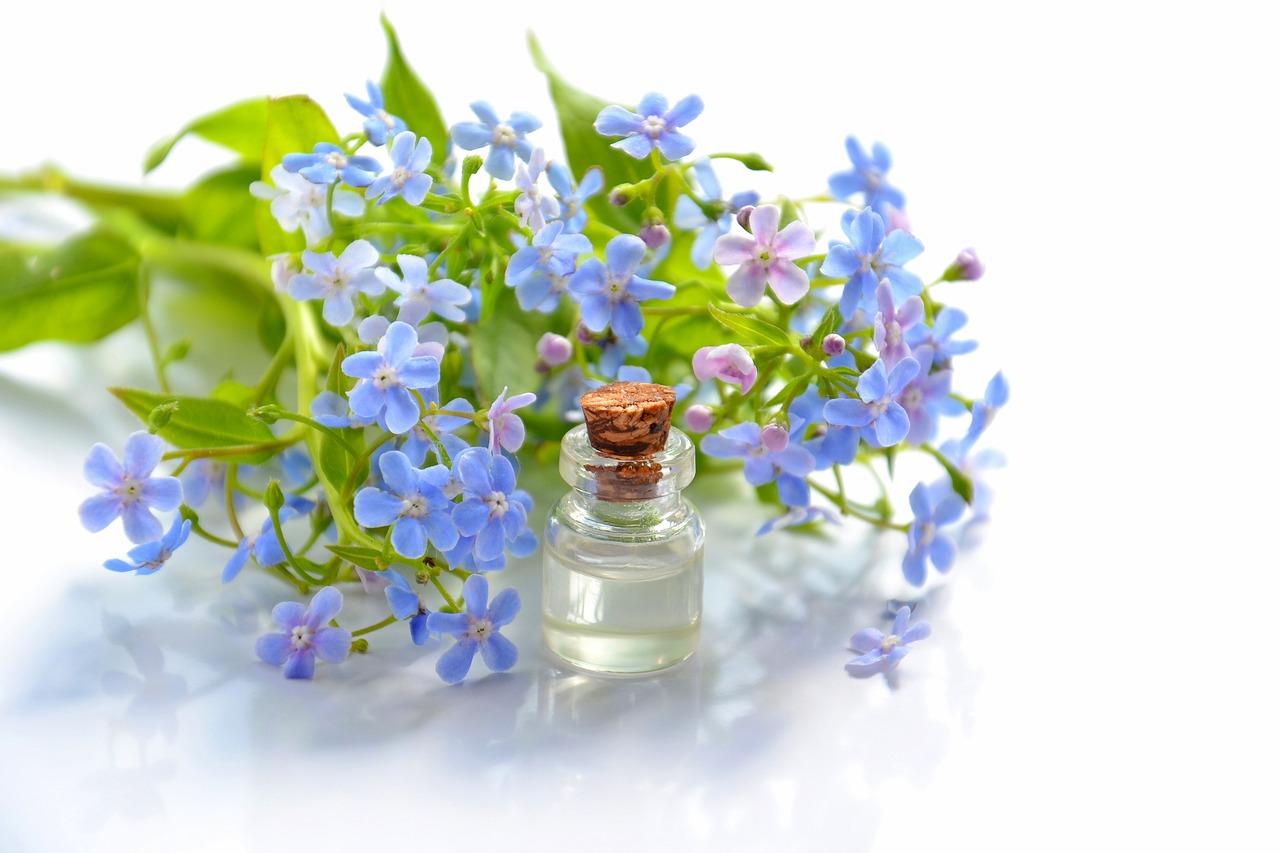 L-aromathérapie-la thérapie aux huiles essentielles