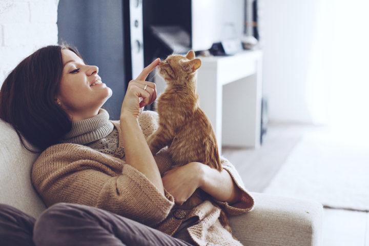 La chat-thérapie : pourquoi chat marche vraiment ?