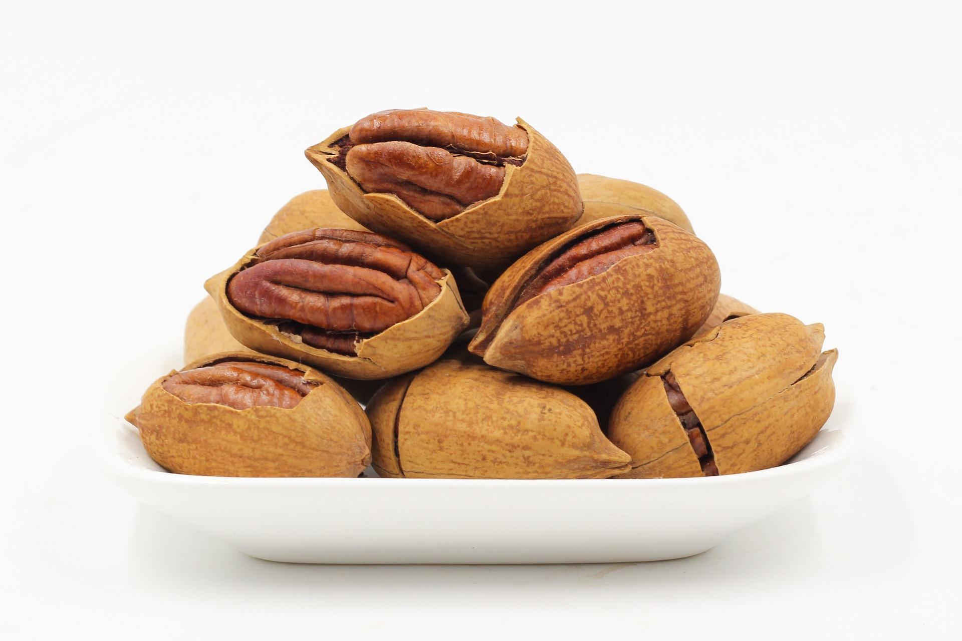 noix fruit nutrition santé