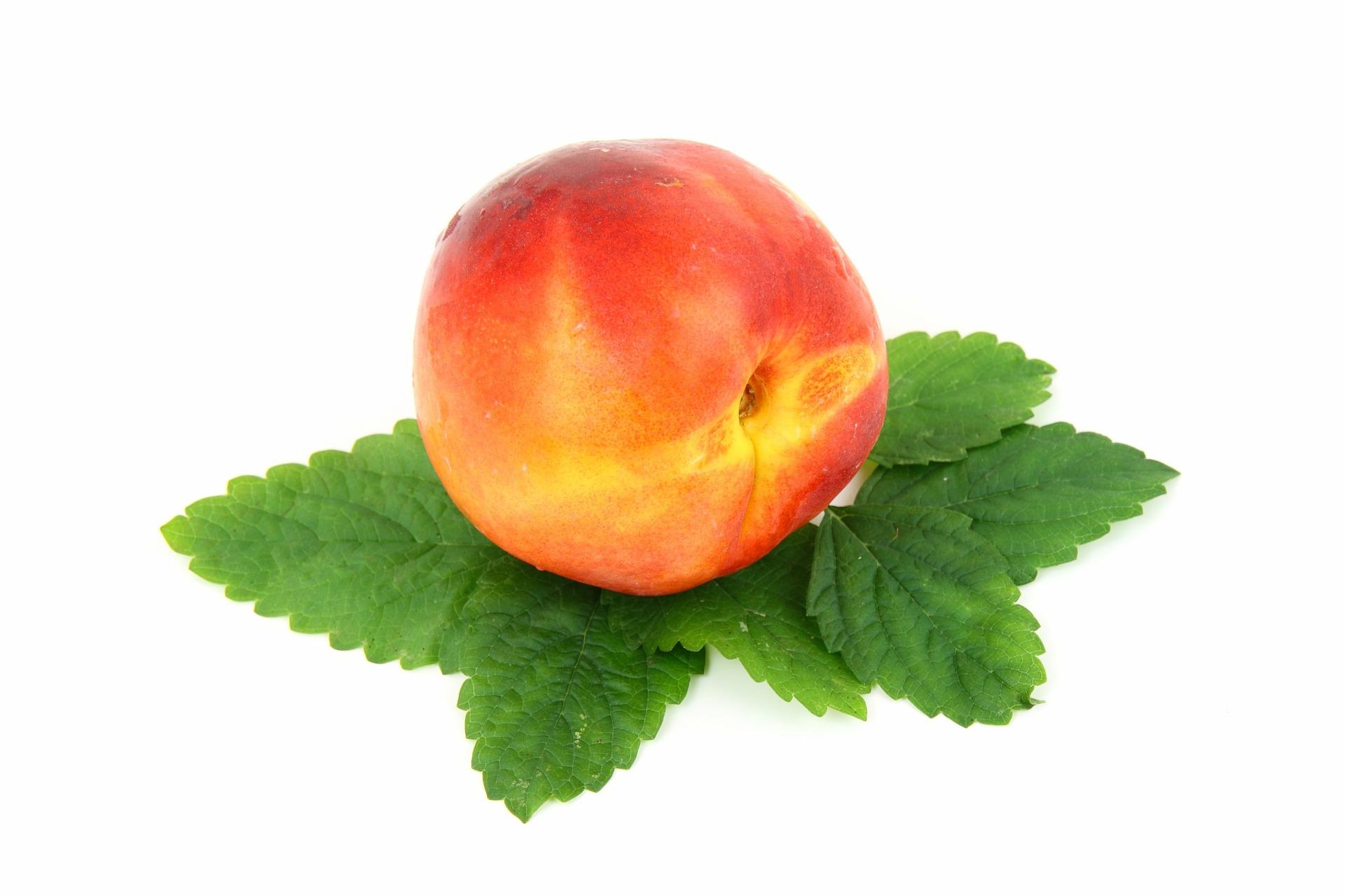 pêche nectarine fruit nutrition santé