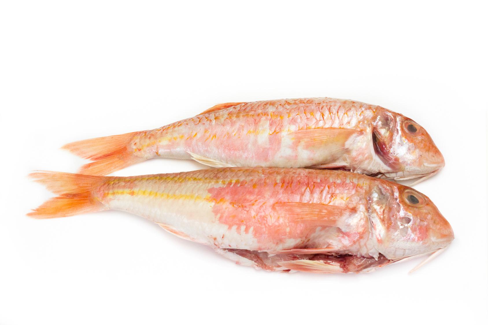 rouget barbet poisson nutrition santé