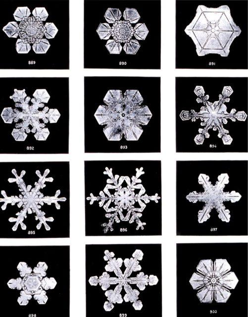 Photo de cristaux d'eau