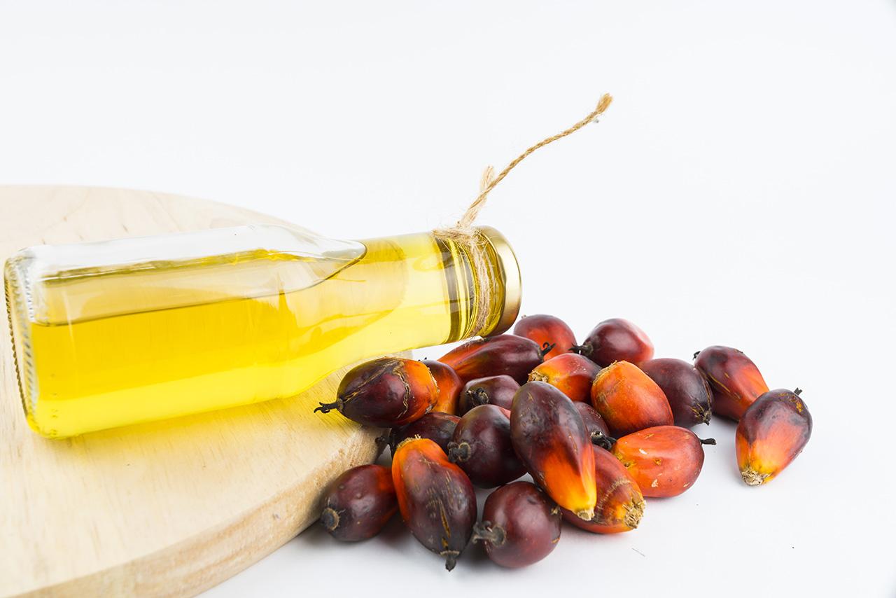 huile de palme, la plus consommée au monde