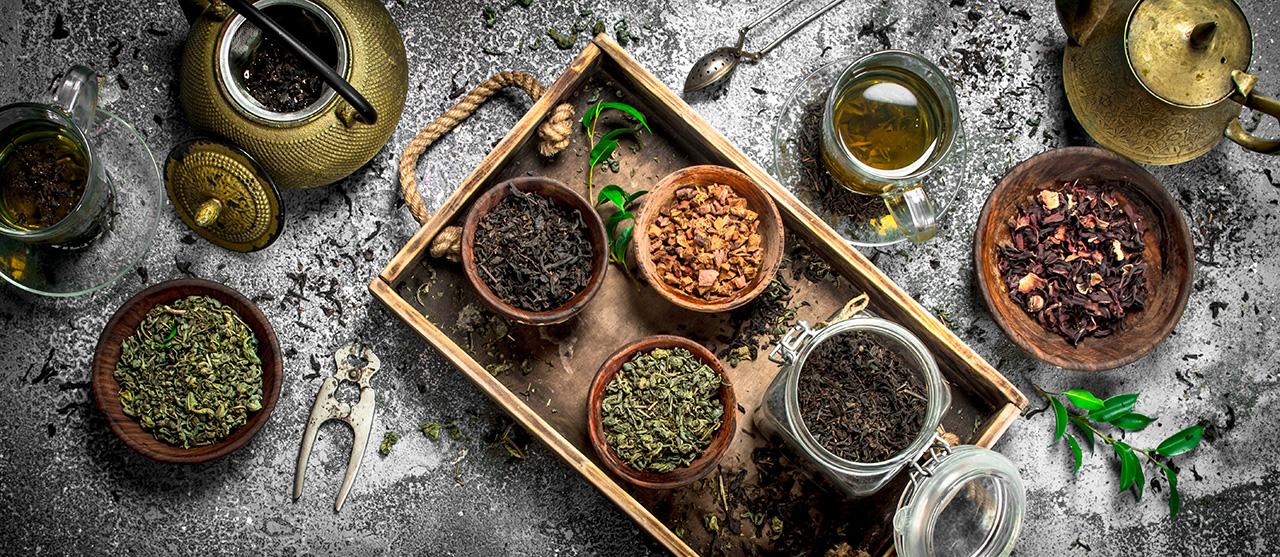 médecine traditionnelle africaine