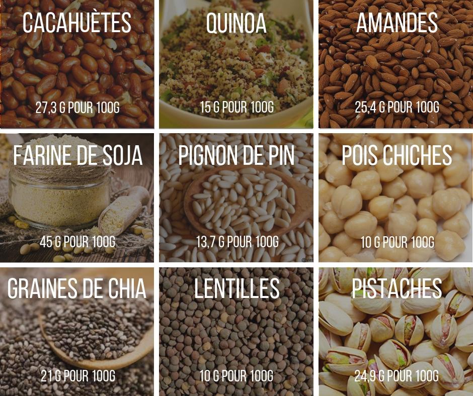 meilleurs aliments protéine