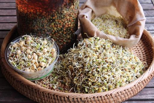 soja, probiotique, stimuler son système immunaire