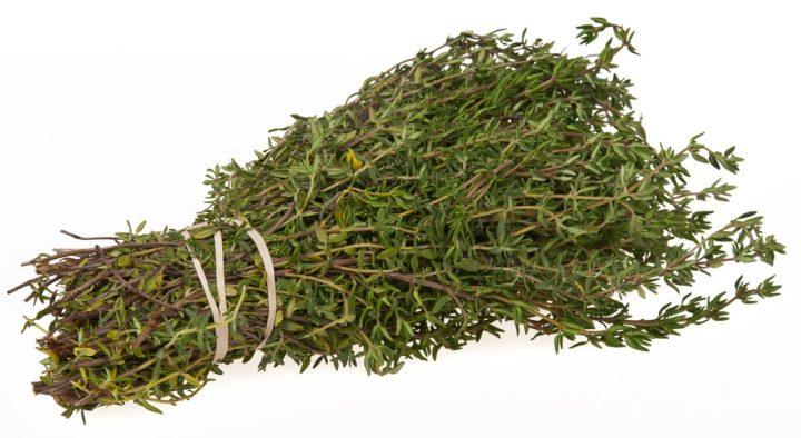Thym, herbe aromatique